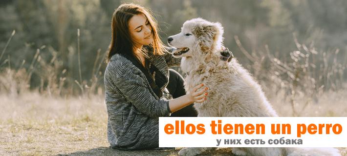 У них есть собака перевод на испанский. Ptetèrito pluscuamperfecto