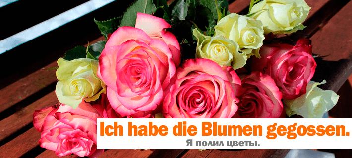 Фраза Я полил цветы на немецком. Прошедшее разговорное время