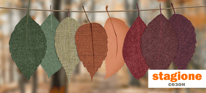 Листья разного цвета